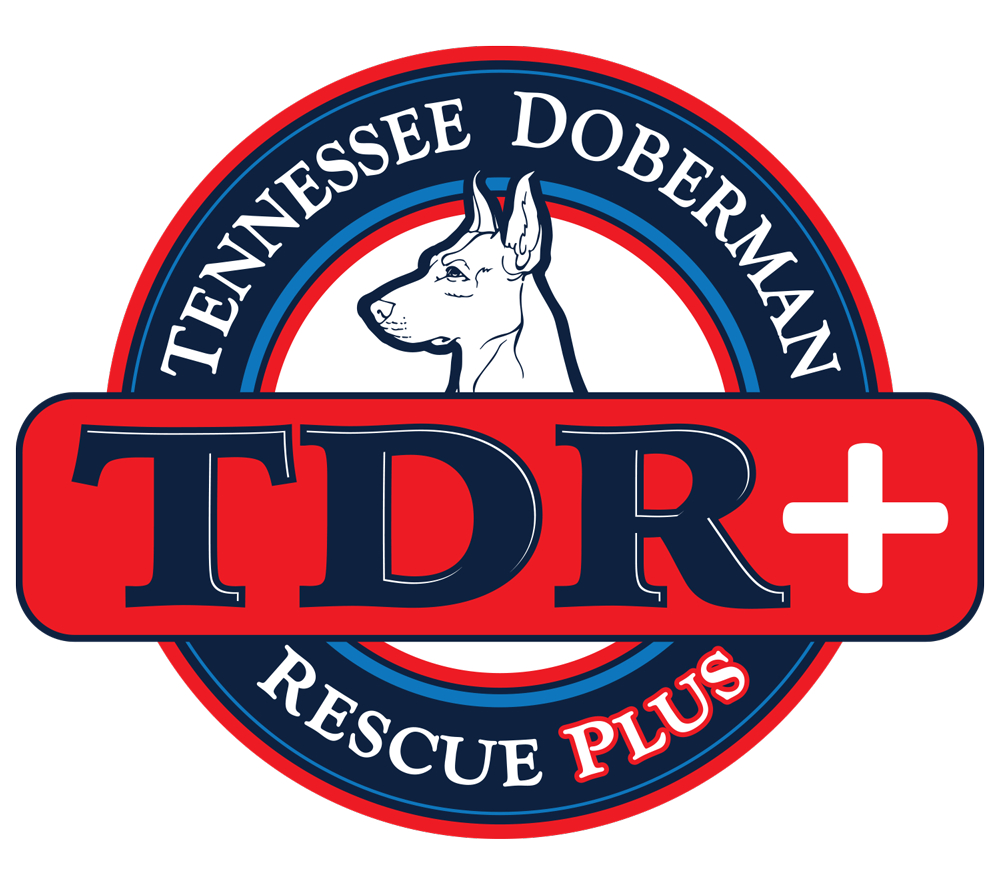 Tennessee Doberman Rescue Plus